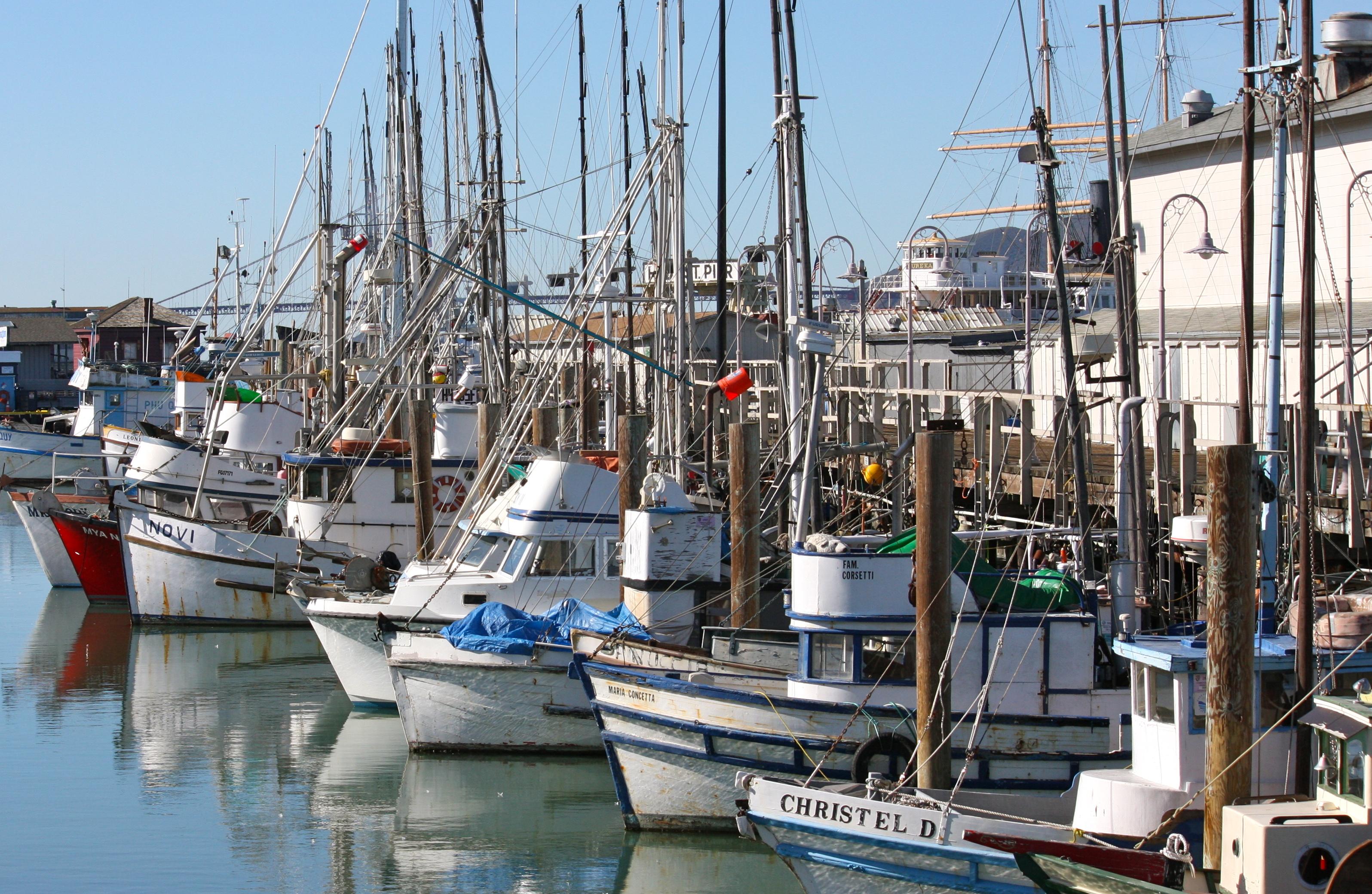 Fisherman s wharf san francisco travel monkey for San francisco fishing
