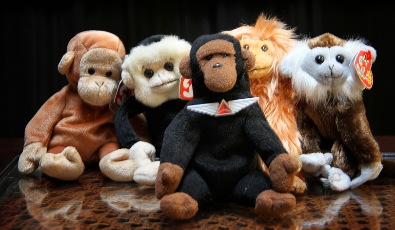 Kongo poses with the four new simian arrivals