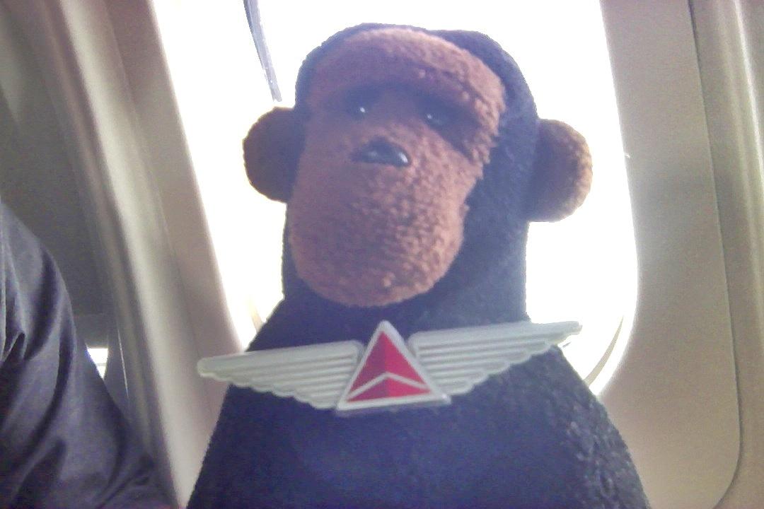 monkey score