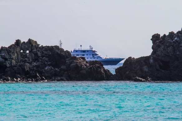 Small Ship Cruise Line Review: Celebrity Cruises Galapagos ...