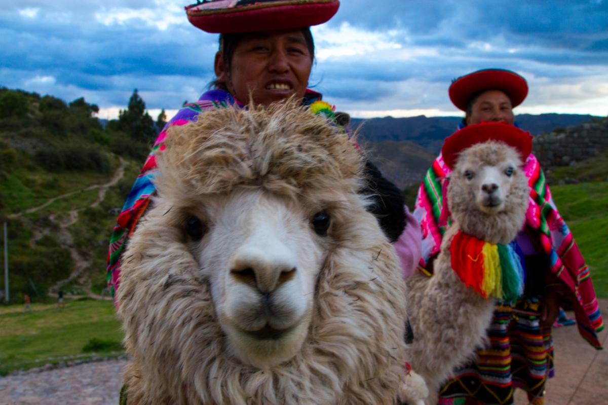 Peru (1 of 1)-5