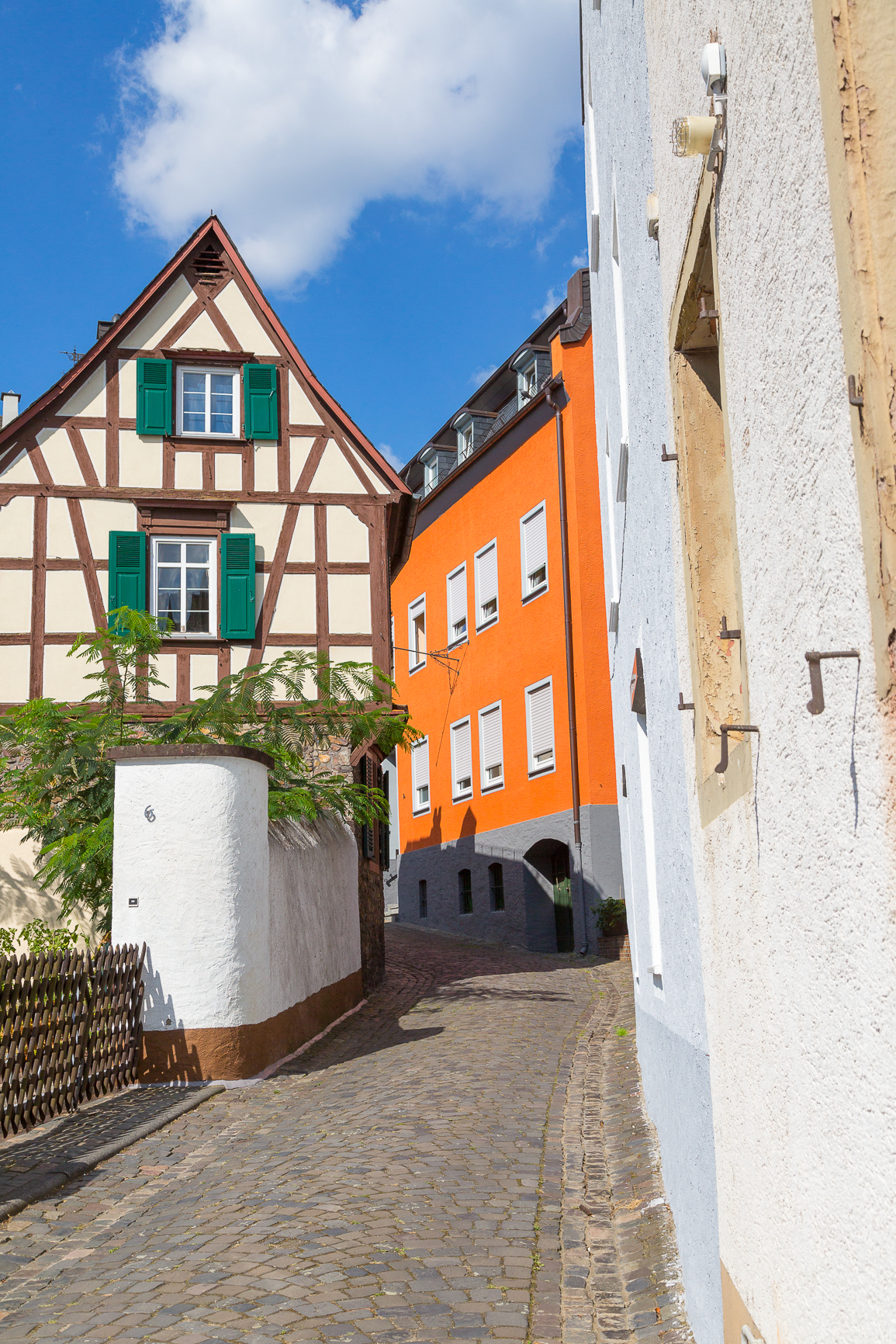 rudensheim-14-of-24