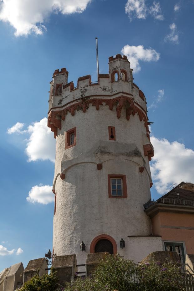 rudensheim-17-of-24